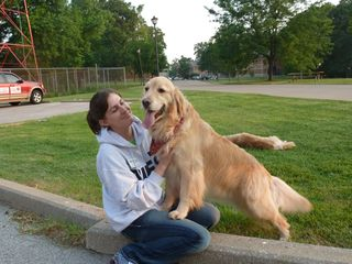 Comfortdog