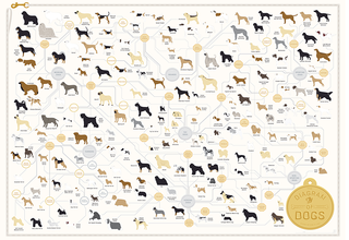 Dogdiagram