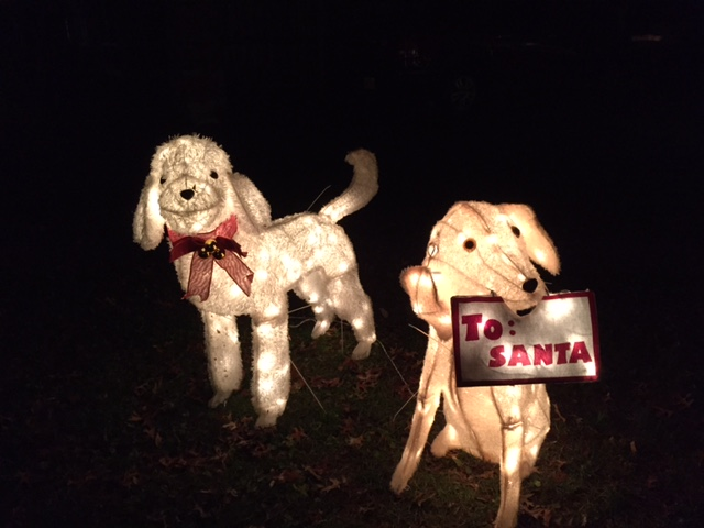 Christmasdogs