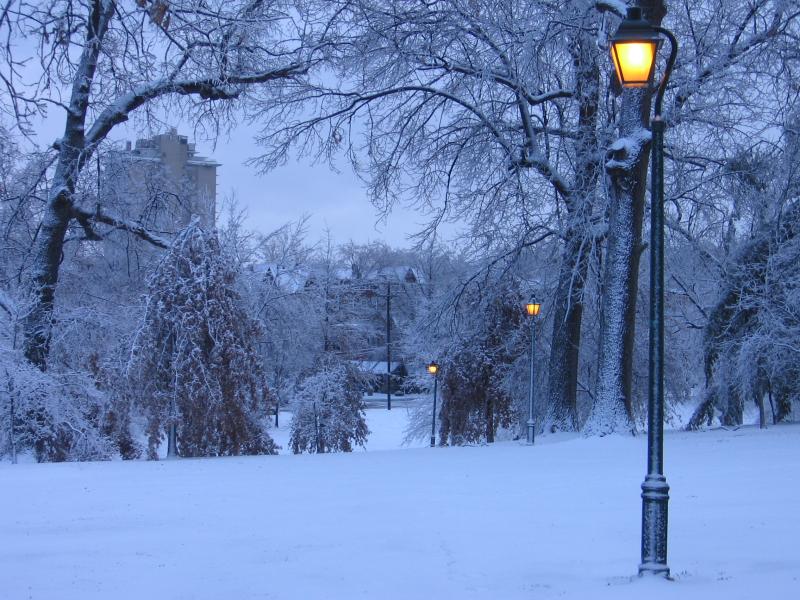Winter storm 005