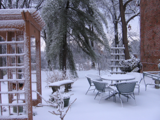 Winter storm 008