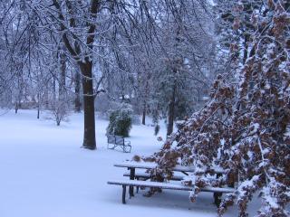 Winter storm 006