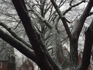 Icestorm172