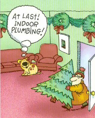 Dogplumbing