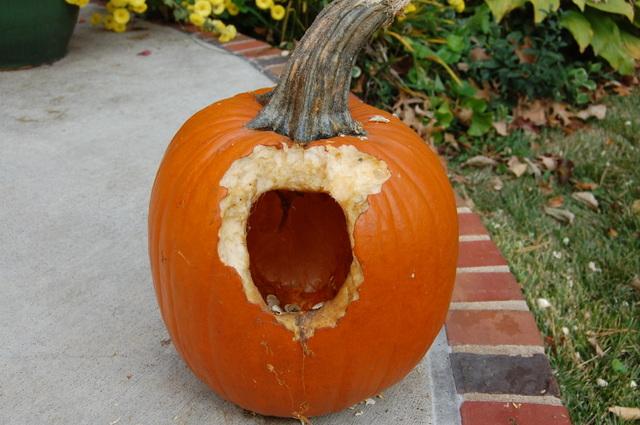 Pumpkin_001_2